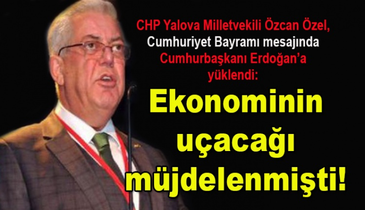 CHP Yalova Milletvekili Özcan Özel, Cumhurbaşkanı Erdoğan'a yüklendi!
