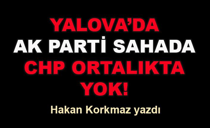 Hakan Korkmaz yazdı... Yalova'da AK Parti sahada, CHP ortalıkta yok!