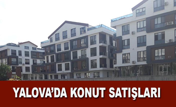 Yalova'da 2021 yılı Haziran ayında 1239 konut satıldı