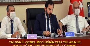 Yalova İl Genel Meclisinin 2020 yılı Aralık ayı olağan toplantısına ait gündemi