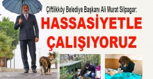 Ali Murat Silpagar: Hassasiyetle çalışıyoruz